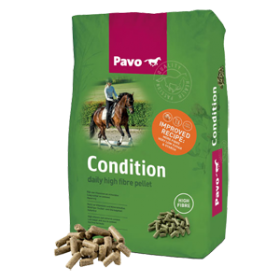 Pavo_Condition dla Archipp